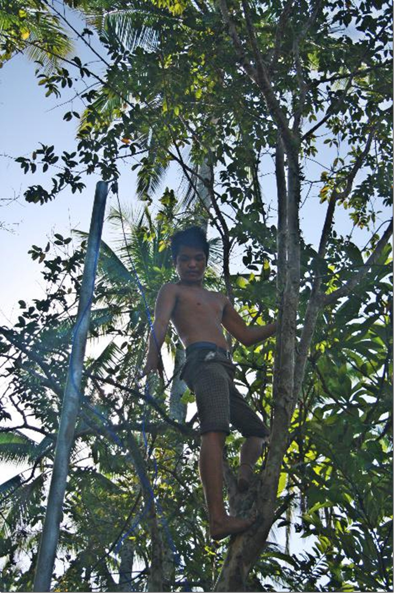 7_MARLON SALDANA CLIMBS A GUAVA TREE TO RETRIEVE THE FLAGPOLE LINE_6723_resized