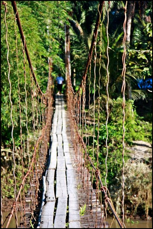 The Indiana Jones Bridge In The Philippines_Canon EOS 40 D Photo by Samuel E Warren Jr_0014_resized