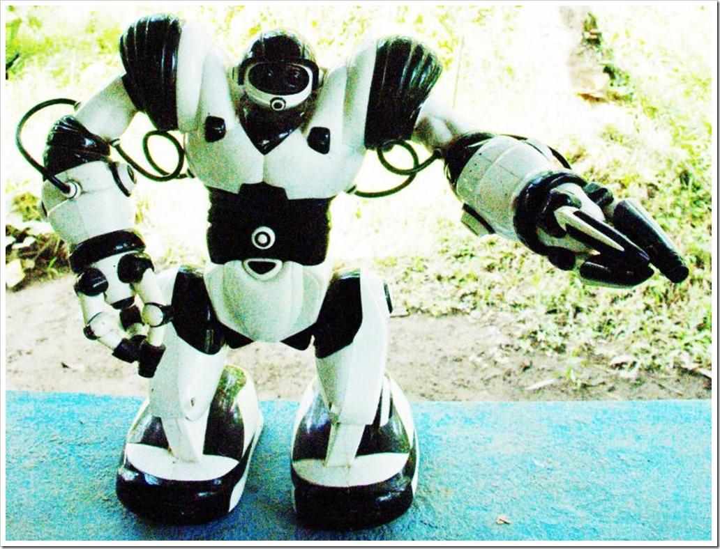 TOY ROBOT PHOTO ONE_resized