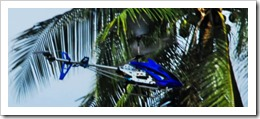 JUNEA TANAHALE PILOTS WARREN ONE PAST A COCONUT TREE THUMBNAIL